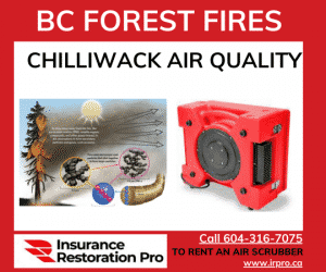 Forest Fires and air scrubbers